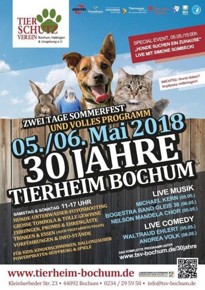 Tierheim Bochum Hunde